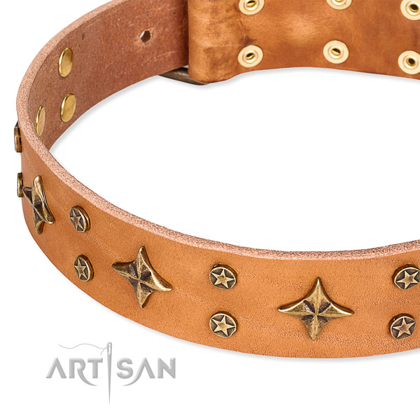 Full grain genuine leather dog collar with remarkable decorations