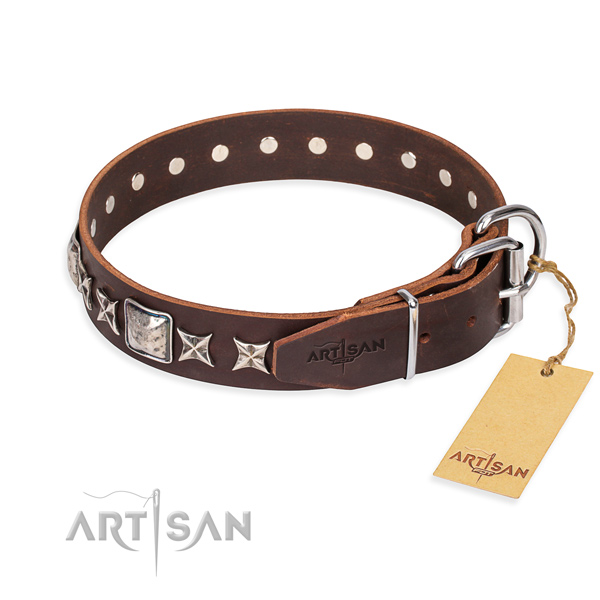Walking genuine leather collar with studs for your four-legged friend