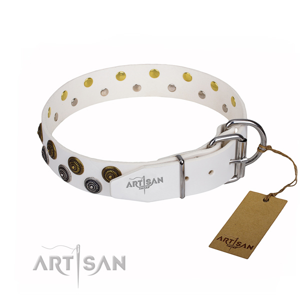Everyday use full grain natural leather collar with studs for your four-legged friend
