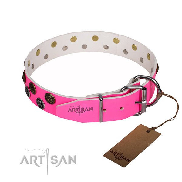 Everyday walking full grain natural leather collar with studs for your four-legged friend