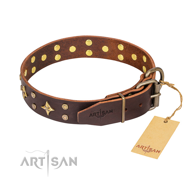 Everyday use full grain leather collar with studs for your dog