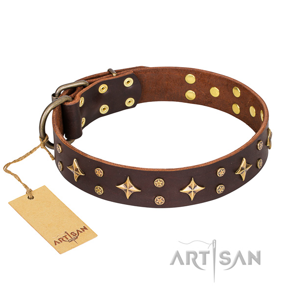 Unique full grain natural leather dog collar for everyday use