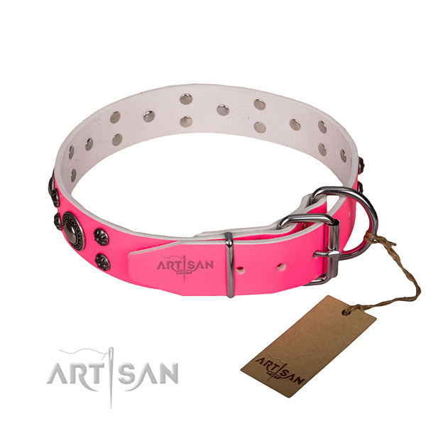 Daily use full grain natural leather collar with corrosion resistant buckle and D-ring