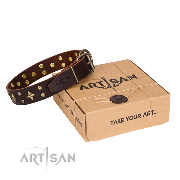 Decorated full grain leather dog collar for easy wearing