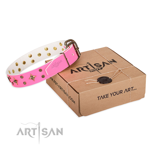 Studded full grain leather dog collar for stylish walking