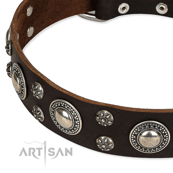 Easy to put on/off leather dog collar with extra sturdy durable buckle and D-ring