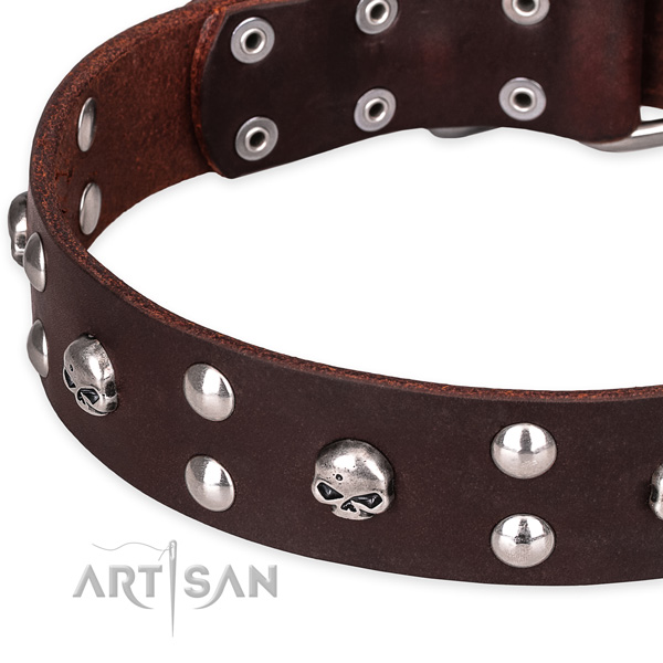 Everyday leather dog collar with cute decorations