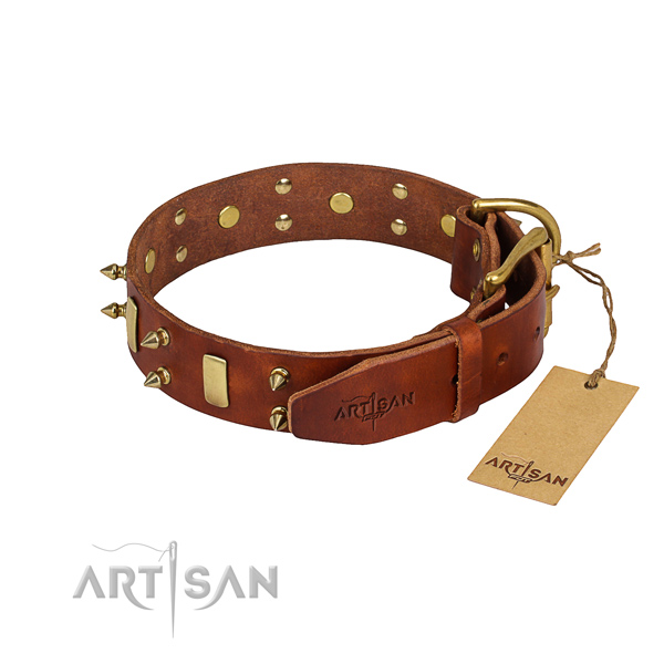 Full grain leather dog collar with thoroughly polished finish