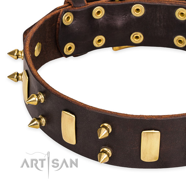 Easy to adjust leather dog collar with almost unbreakable non-rusting buckle