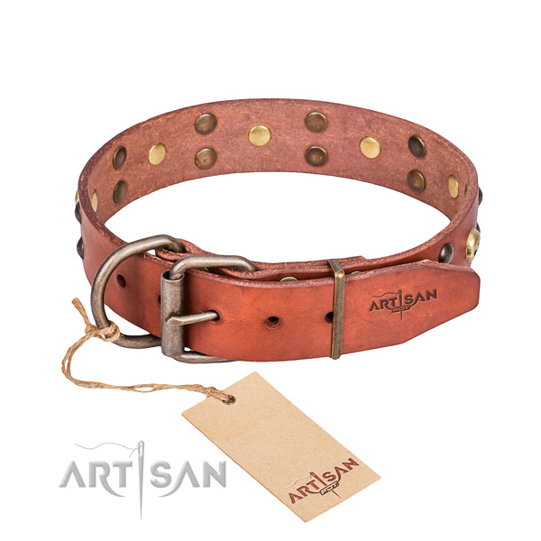 Fancy leather dog collar for walking