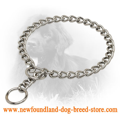 Strong Chrome Plated Newfoundland Choke Collar for Dog Training