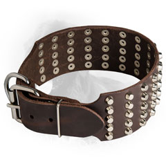 Leather Newfoundland Collar with Durable Buckle