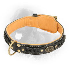 Leather Newfoundland Collar with Fur Protection Plate