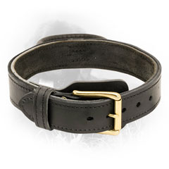 Newfoundland Collar with Durable Fittings