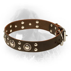 Leather Newfoundland Collar with Strong D-ring