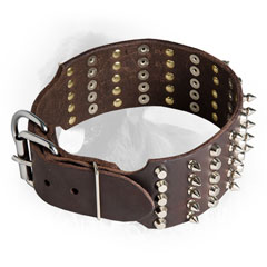 Decoratec Newfoundland Collar with Super Strong Buckle