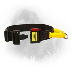 Stylish Nylon Newfoundland Dog Collar With Lite Quick  Release Buckle
