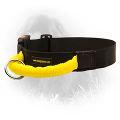 Nefoundland Nylon Quick Release Buckle and Tri-glide  Dog Collar