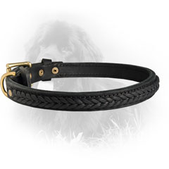 Trendy Leather Collar