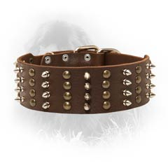 Original Leather Collar
