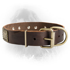Newfoundland Dog Leather Collar Solid Brass Buckle