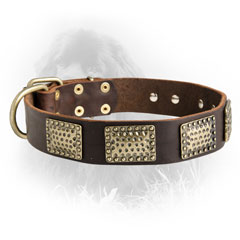 Newfoundland Dog Leather Collar Brass Decorations
