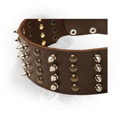 Handmade Decorated Leather Collar