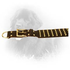 Fashionable Spiked Leather Collar