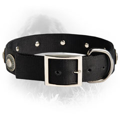 Newfoundland Dog Nylon Collar Special Nickel Buckle