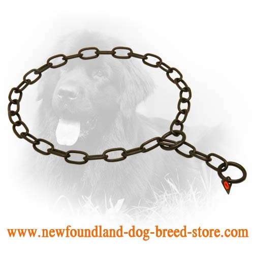 Rust Resistant Black Stainless Steel Newfoundland Fur Saver