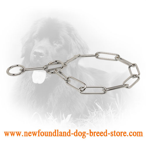 Chrome Plated Newfoundland Collar with Fur Saving Links