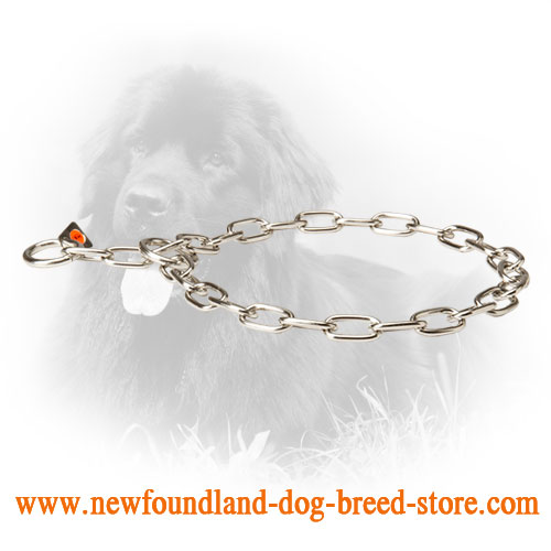 Newfoundland Fur Saver for Obedience Training