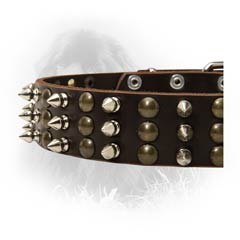 Newfoundland Leather Collar Handcrafted Decoration 3  Studs and Spikes Rows