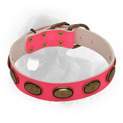 Newfoundland Leather Collar of Pink Color