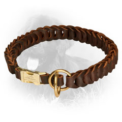 Golden Retriever Leather Collar Stylish Design