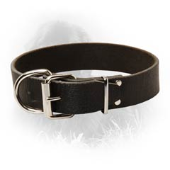 Newfoundland Dog Leather Collar