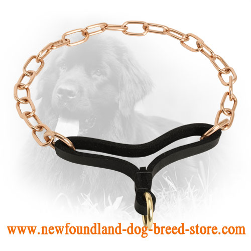 Curogan Newfoundland Martingale Collar with Durable Leather Part