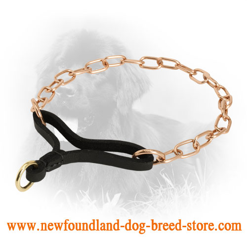 Curogan Newfoundland Martingale Collar for Behavior Correction