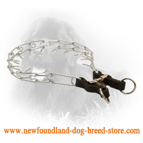 Strong Chrome Plated Newfoundland Pinch Collar with Leather Part