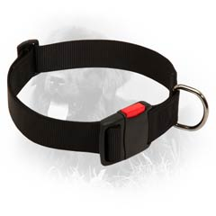 Comfy Newfoundland Nylon Collar With Tri-glide and  Quick Release Buckle