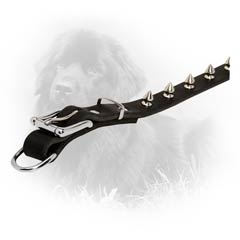 Nickel Plated Hardware Newfoundland Dog Leather Collar