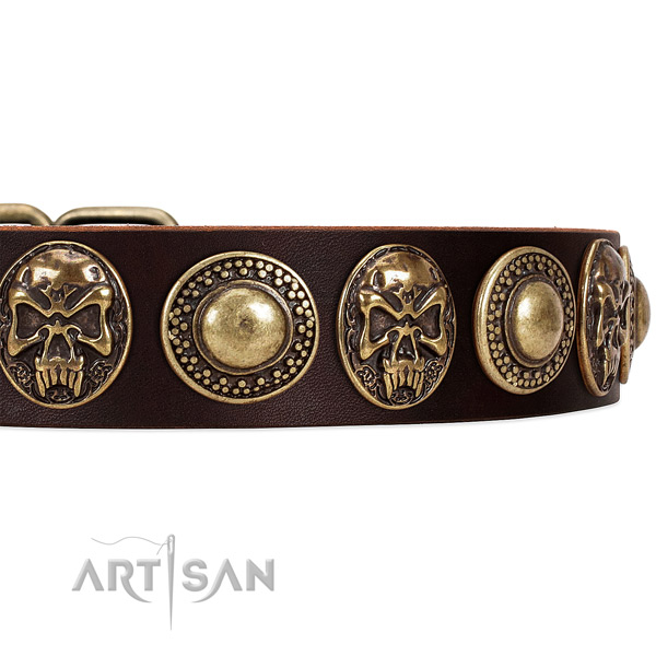 Natural genuine leather dog collar with studs for stylish walking