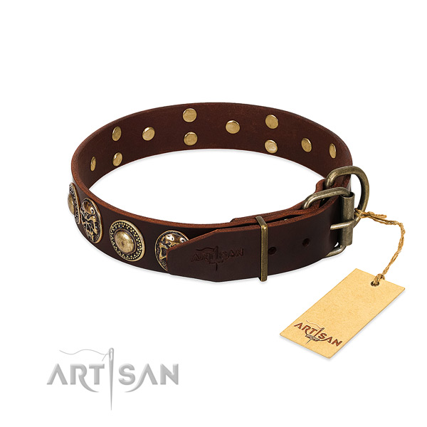 Reliable embellishments on everyday use dog collar