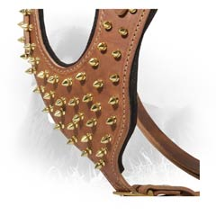 Golden-Like Spikes on Leather Newfoundland Harness