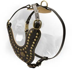 Reliable Leather Dog Harness for Attack/Agitation Training