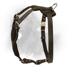 Newfoundland Harness with Easily Adjustable Straps