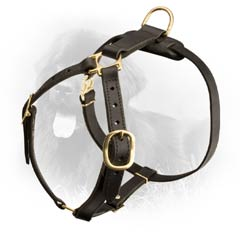 Leather Newfoundland Harness Universal in Use