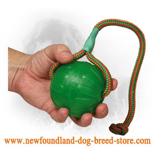 3 1/2 Inch Newfoundland Ball for Chewing and Training