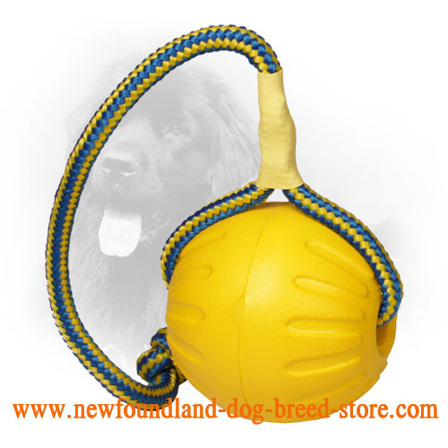 Large 3 1/2 Inch Foam Newfoundand Ball with Nylon Rope