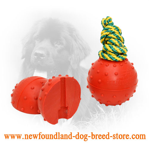 Large Rubber Newfoundland Ball with Colored Nylon Rope